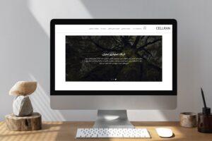 راه اندازی وب سایت سلران